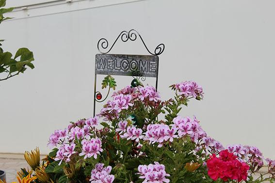 Bienvenue_villa_maimona_balaruc_les_bains