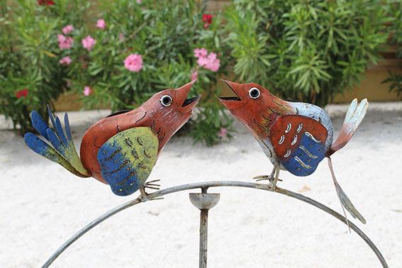 oiseaux villa maimona balaruc les bains