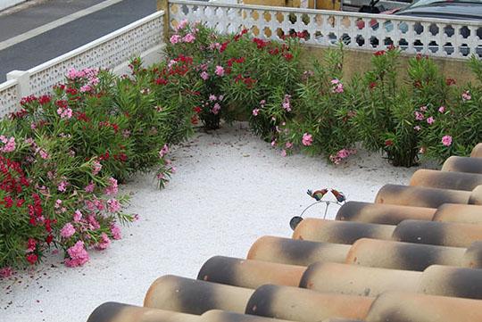 Vue jardin terrasse chambre d'hôtes villa maimona balaruc les bains
